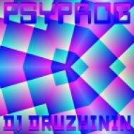 Dj Druzhinin - Psyprog ()