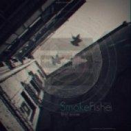SmokeFishe  - One day  (Original mix)