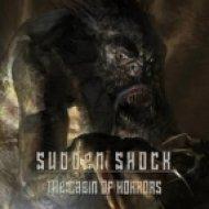 Sudden Shock - Slaughter  (Original mix)