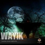 Wayik  - Overnight Journey (Original Mix)