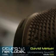 David Meiser - Inner Fight  (Original mix)