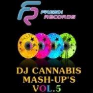 Timati vs. DJ Favorite ft. Kristina Mailana ft. DJ Dnk - My Life Superstar  (DJ Cannabis Mashup)