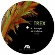 Trex - Loungin  (Original mix)
