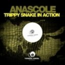 Anascole - Trippy Snake In Action  (Original Mix)