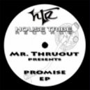 Mr. Thruout - Touch Me  (Origina Mix)