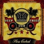 Deep Fried Dub - Kryptology  (Deciphered Mix)