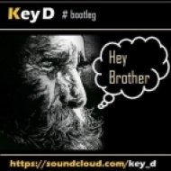 Avicii vs Martin Garrix - Hey brother, I\'m a wizard! (Key D bootleg)  (Mashup)