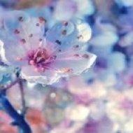 Lovelike - Sunny March  (Mix)