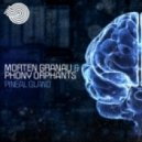 Morten Granau & Phony Orphants - Pineal Gland  (Original mix)