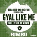 Big Fish, Aquadrop, Stush - Gyal Like Me (Wiwek Remix)