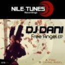 DJ Dani - Crying Angel (Original Mix)