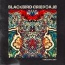 Blackbird Blackbird - Summer\'s Almost Here (Original mix)
