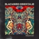 Blackbird Blackbird - Grow Old With Me (Don\'t Let Go)