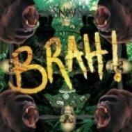Snavs -  Brah! & Rockin to the realest (Dj TreenaD & Dj SpeeD Crazy Mash-Up) ((Dj TreenaD & Dj SpeeD Crazy Mash-Up) )