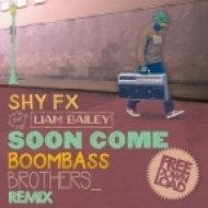 Shy FX feat Liam Bailey - Soon Come (Boombassbrothers Remix)