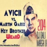 Avicii vs. Martin Garix   - Hey Brother Wizard  (Dj DaLI Mash Up)