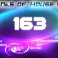 Viel - Elements of House music 163 (320kbps)