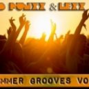 D Punxx & Lexx - Summer Grooves vol.1 ()