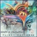Birds of Paradise - Skyward Eye (Album Mix)
