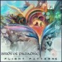 Birds of Paradise - Ocean Minded (Album Mix)