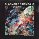 Blackbird Blackbird - There Is Nowhere (DWNTWN Remix)