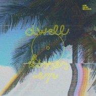 Dwell - ki$es (FM_ reinterpretation)