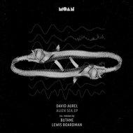 David Aurel - Alien Sea (Original Mix)