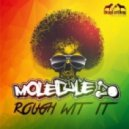 Molecule (USA) - Rough Wit It (Original Mix)