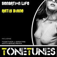 Artix Birne - Without A Tear Feeling (Original mix)