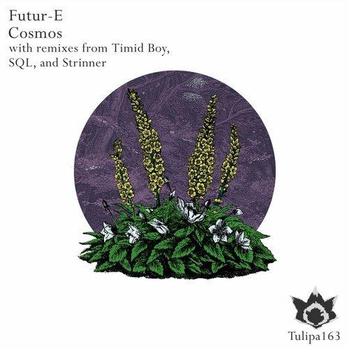 Futur-E - Mycenaean Princes (Strinner Remix)