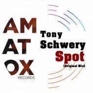 Tony Schwery - Spot (Original Mix)