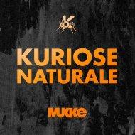 Kuriose Naturale - Alaz (Innellea Remix)