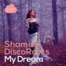 Discorocks & Shamizo - My Dream (5prite Remix)
