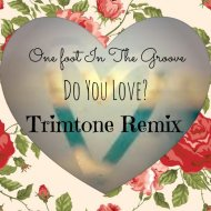 One Foot In The Groove - Do You Love (Trimtone Remix)