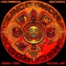 Voltage, Vinyl Junkie - Conquer (Original mix)