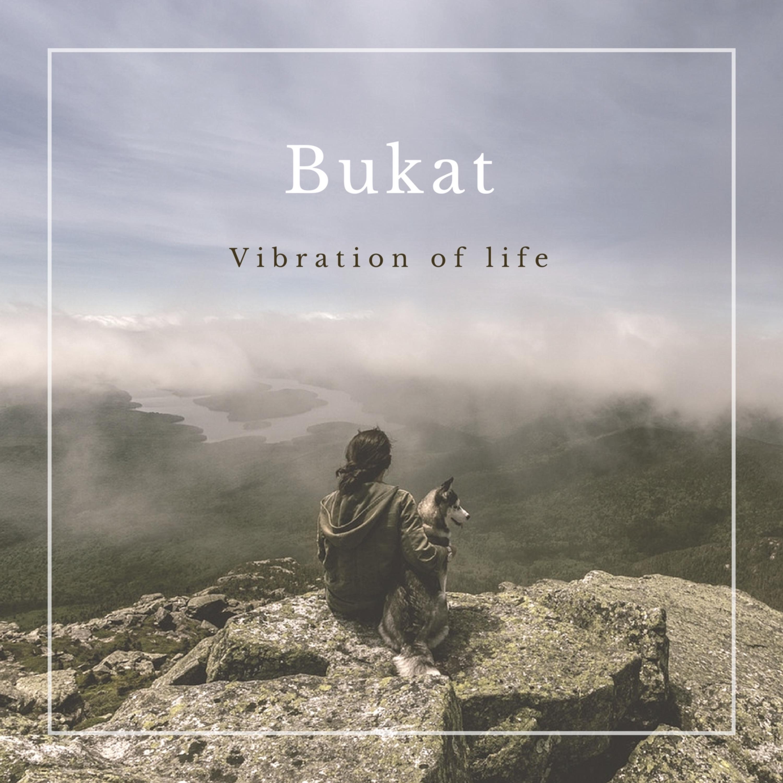 Bukat - Vibration of life (Original Mix)