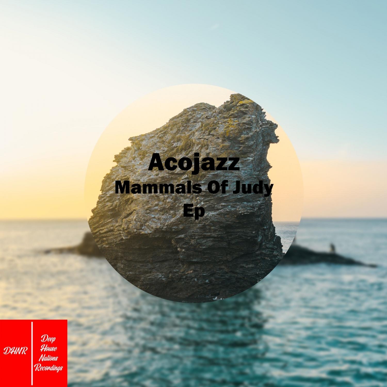 Acojazz - Aino (Original Mix)