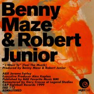 Robert Junior & Benny Maze - I Want To (Feel The Muzik) (Feel The Beats)