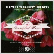 The Nurk, Desiree Cardia - To Meet You In My Dreams (Le Canarien Remix) (Original Mix)