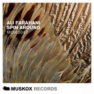 Ali Farahani - Spin Around (Original Mix)