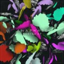Anaphase - Ornament (Original Mix)