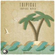 Tripical - Tripical (Original Mix)