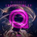 Biggoose - Time (Original Mix)