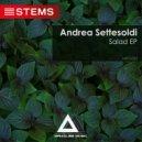 Andrea Settesoldi - Country Salad (Original Mix)