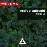 Andrea Settesoldi - Mirtis (Original Mix)