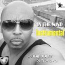 Biblical Jones, DJTruFlava - In The Wind (instrumental) (Original Mix)