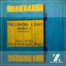 Following Light - Anomaly (N\'pot Remix) (Original Mix)