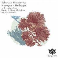Sebastian Markiewicz - Nitrogen (Kunkel & Moog Remix) (Original Mix)