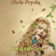 Chris Pryde - Darkness (Original Mix)
