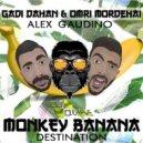 Gadi Dahan & Omri Mordehai Feat Alex Gaudino  - Monkey Destination (D-VIBE Mashup)